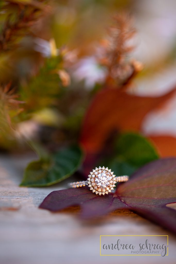 Engagement ring with fall colors