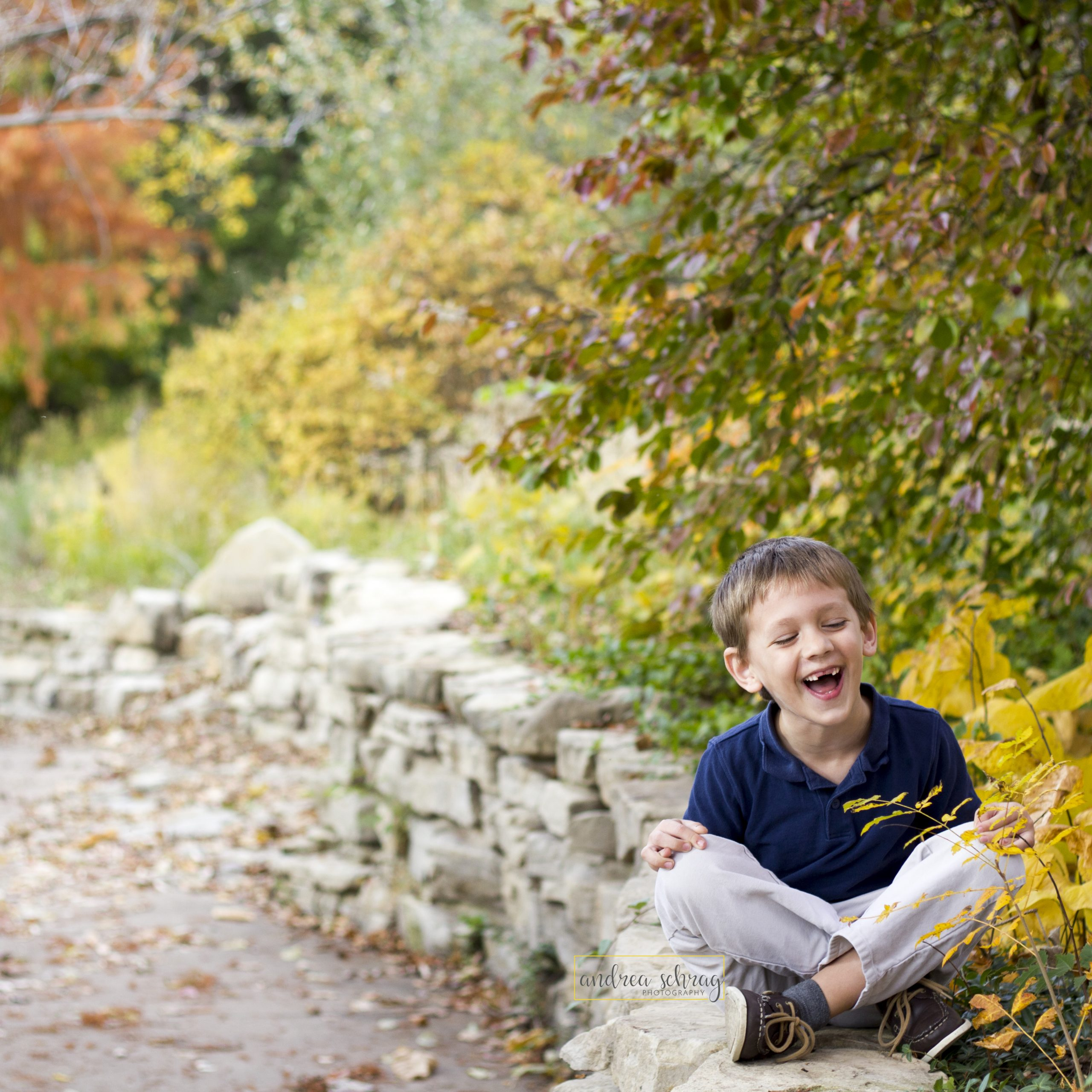 maximize your fall mini session